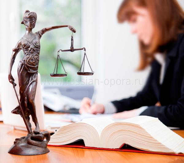 консультация для организации юридическая